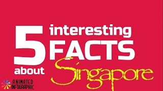 Infographic Maker Singapore 5 interesting facts with infographics video