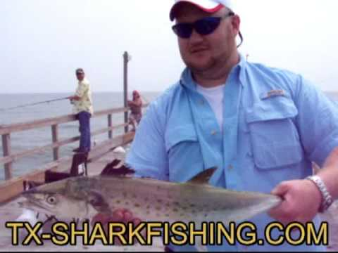Catching fish at bob hall pier in corpus christi texas for Fishing report corpus christi texas