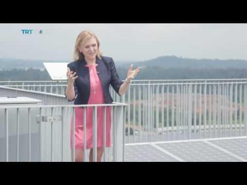 Money Talks: Solar panels power houses in Singapore