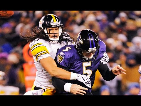 Top 5 Troy Polamalu Career Plays | NFL