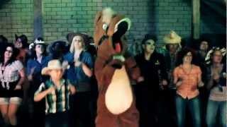 Hoppe Reiter - Der Ponysong