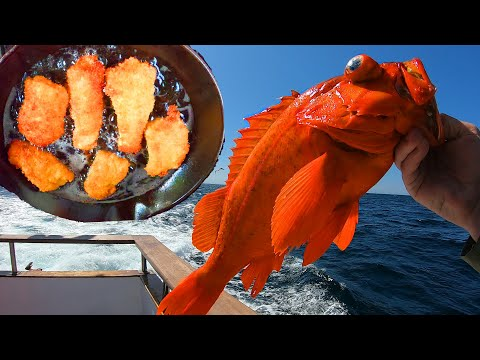 Rockfishing At Santa Rosa Island On The Coral Sea - Catch And Cook