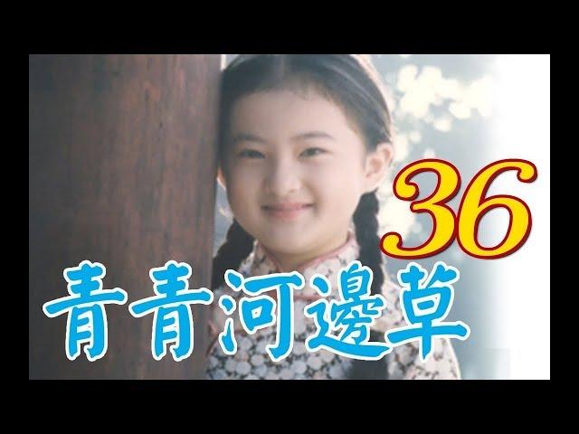 『青青河邊草』 第36集(馬景濤、岳翎、劉雪華、徐乃麟、金銘) #跟我一起 #宅在家