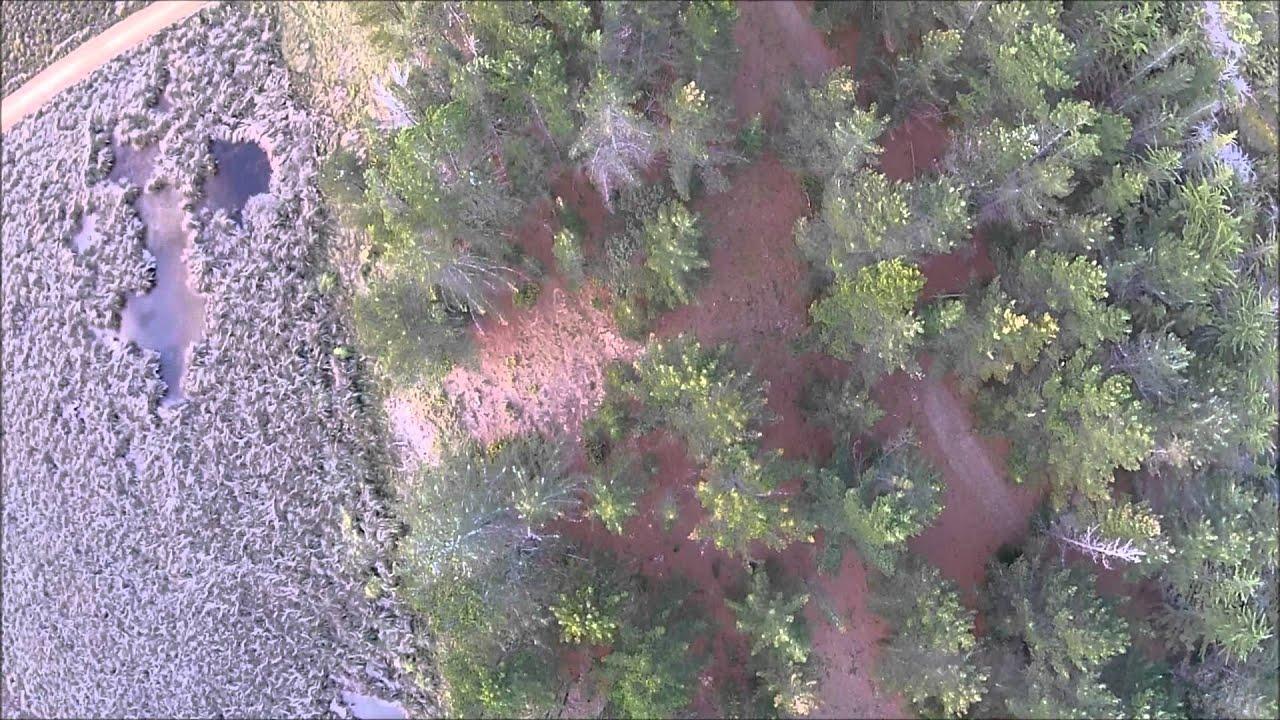 UAV Airborne Laser Scanning with Velodyne VLP-16 - YouTube