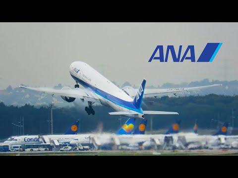 STEEP Takeoff All Nippon Airways Boeing 777-300ER At Frankfurt Airport | EDDF/FRA