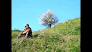 Klaus Wiese - The Divine