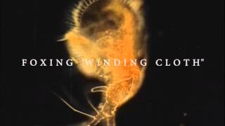 """Foxing - """"Winding Cloth"""" (Official Audio)"""