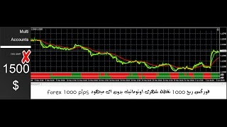 forex 1000 pips EURUSD-GBPUSD فوركس ربح 1000 نقطة شهرى اوتوماتيك بدون اى مجهود