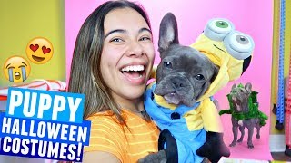 PUPPY TRIES ON the cutest dog halloween costumes!!