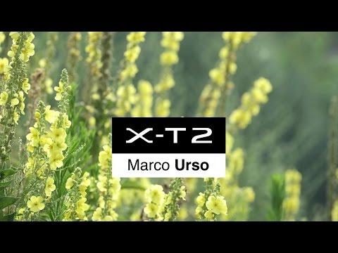 X-T2: Marco Urso (Italy) x Nature & Travel / FUJIFILM