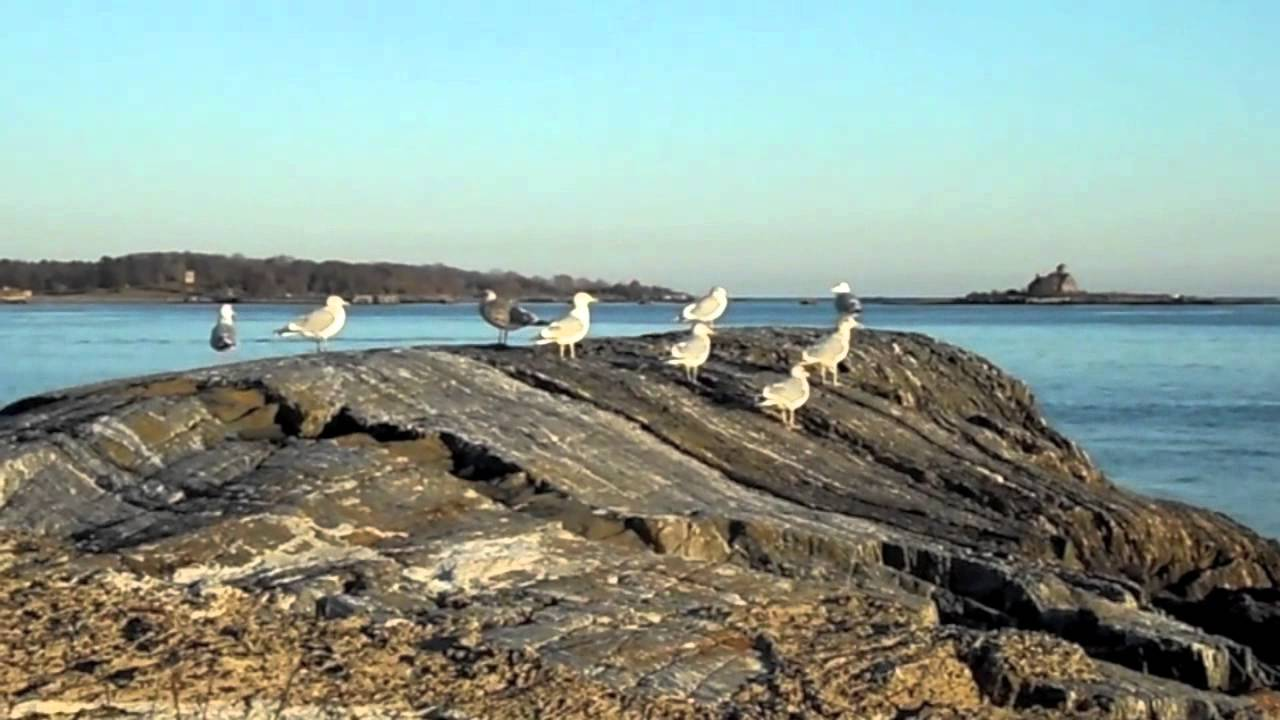 New Castle Nh Great Island Common Video