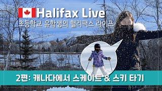 [핼리팩스 Live] 캐나다 조기유학 초등학생이 코로나…