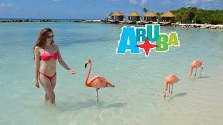 Аруба. Розовый фламинго. Сказочный закат на пляже.