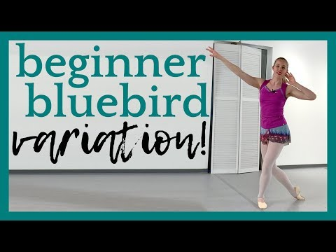Beginner Bluebird Variation! | Broche Ballet