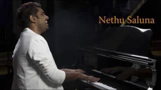 Nethu Saluna