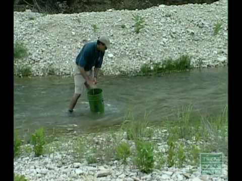 Guadalupe Bass- Restoring A State Treasure Texas Parks And Wildlife [Official]