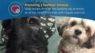 Healthier lifestyle - take your dog to work week