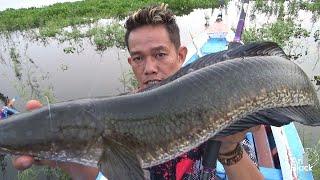 CASTING MONSTER GABUS  PAKAI JUMP FROG  Spot Duri Dihuni Ikan Gabus Monster