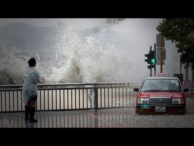 Typhoon Hato wreaks havoc in Hong Kong