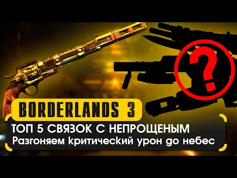 Топ 5 связок с непрощенным в Borderlands 3