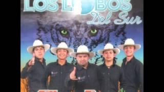 Watch Los Lobos Ya Se Va video