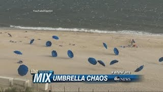 Runaway Umbrellas Cause Chaos on the Beach