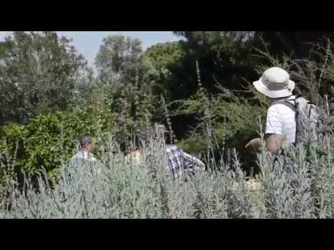What Is Ecological Gardening Must See Video