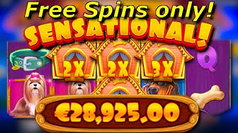 x289 win / The Dog House free spins only compilation! #7