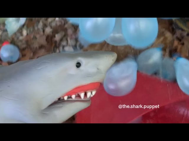 SHARK PUPPET WATER BALLOON FIGHT!!