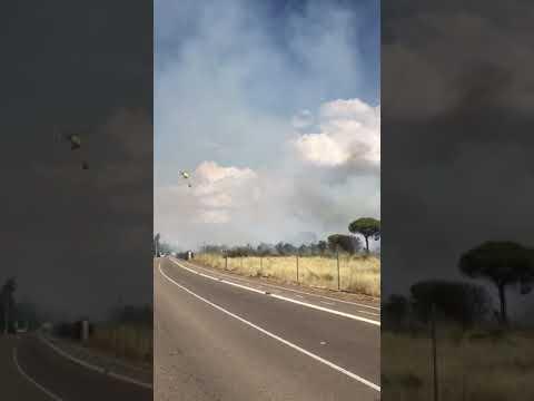 El fuego de Entrepinos baja a nivel cero y está controlado