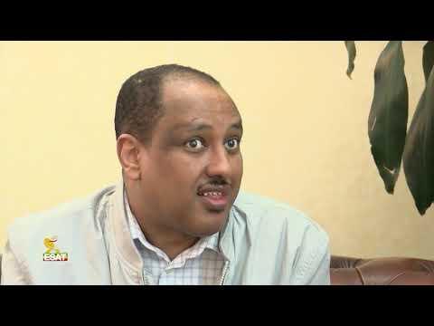 ESAT Addis Ababa Amharic News Feb 19 2019