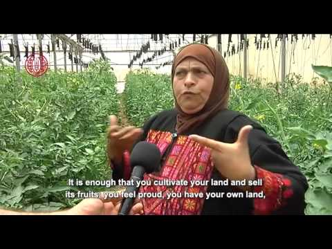 """Palestinian Organic Farming.. National Environmental Interest or Utopian Dream?"