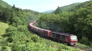 2019.08.24 撮影 常紋峠 石北貨物 玉ねぎ列車 ☆北鉄路漫581