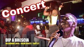 Concert explosif de Dip à Brescia
