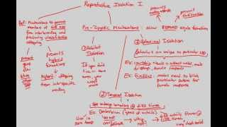 Macroevolution - Repro Isolation I (Part 2)