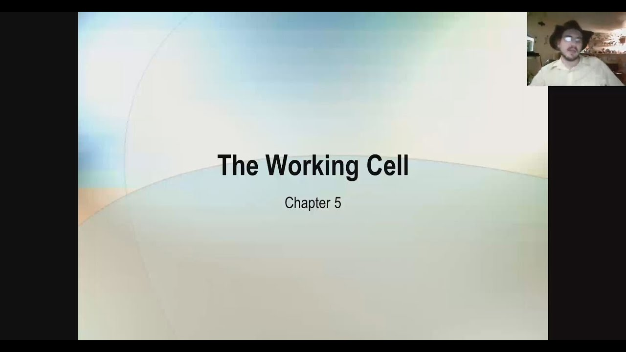 bio 105 Bio 105 | science of biology with lab: gt-sc1 lecture credit: 3 lab credit: 1 examines the basis of biology in the modern world and surveys the current knowledge and conceptual framework.