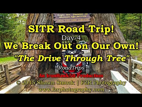 SITR Trip! - We Break Out on Our Own Vacation! (Day-4) | RT-SPE | RoadTrips