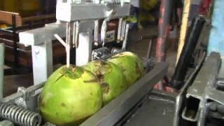 Maquina de Abrir Coco - Giliade