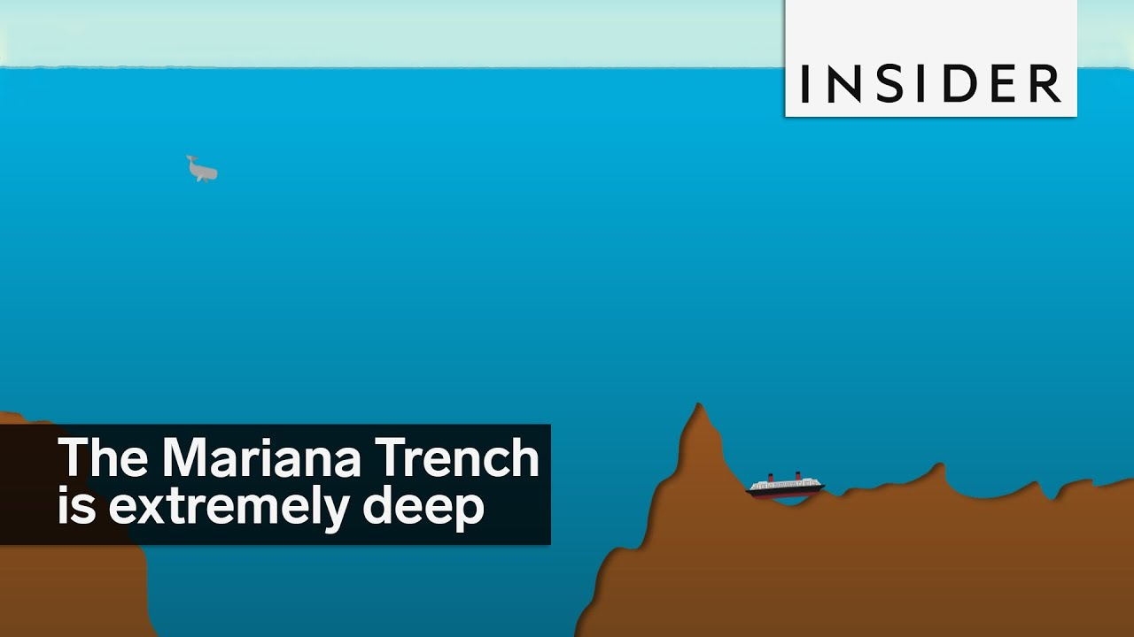 the mariana trench