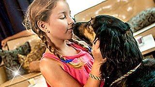 Un Amour de Chien FILM COMPLET en Français (Enfants, Famille, Comédie)