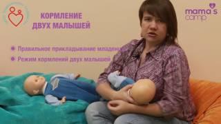 Кормление грудью двух малышей