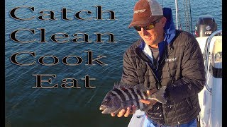 SHEEPSHEAD {catch clean cook} How to make Home made fish Piccata