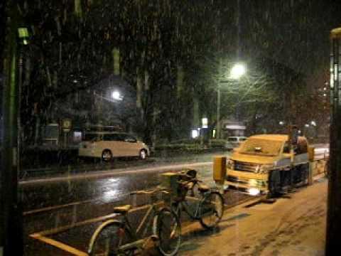 Primera nevada 2010, Nerima-ku, Tokyo (Part 1) 2010年初雪
