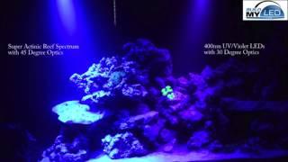 build my led super actinic vs 400nm violet spectrum aquarium lighting