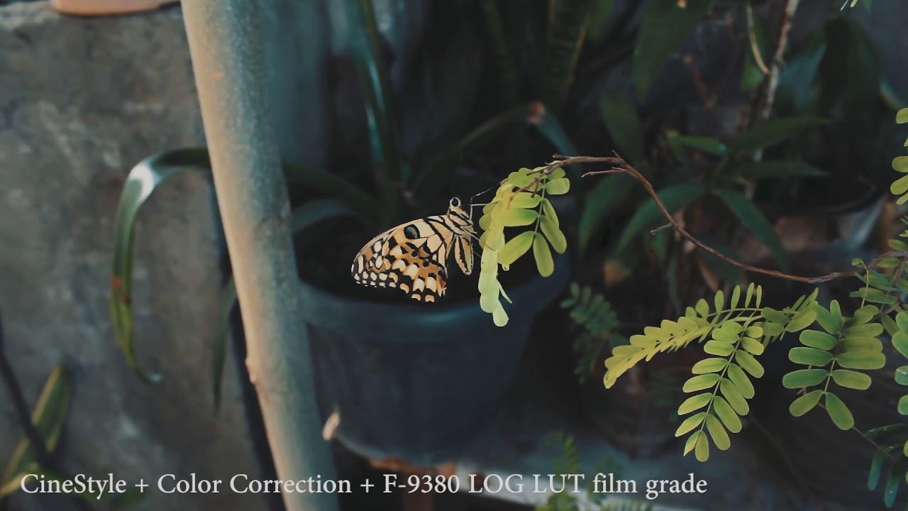 CineStyle vs VisionColor FILM LOOK UPDATE 2018