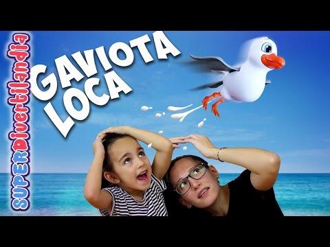 Gaviota Loca! Seagull Splat. Juego de mesa en SUPERDivertilandia.
