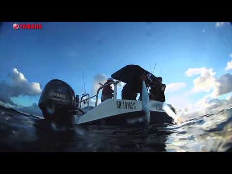 ASFN Power Angling - Jigging for Couta at Paradise Beach Lodge Mozambique