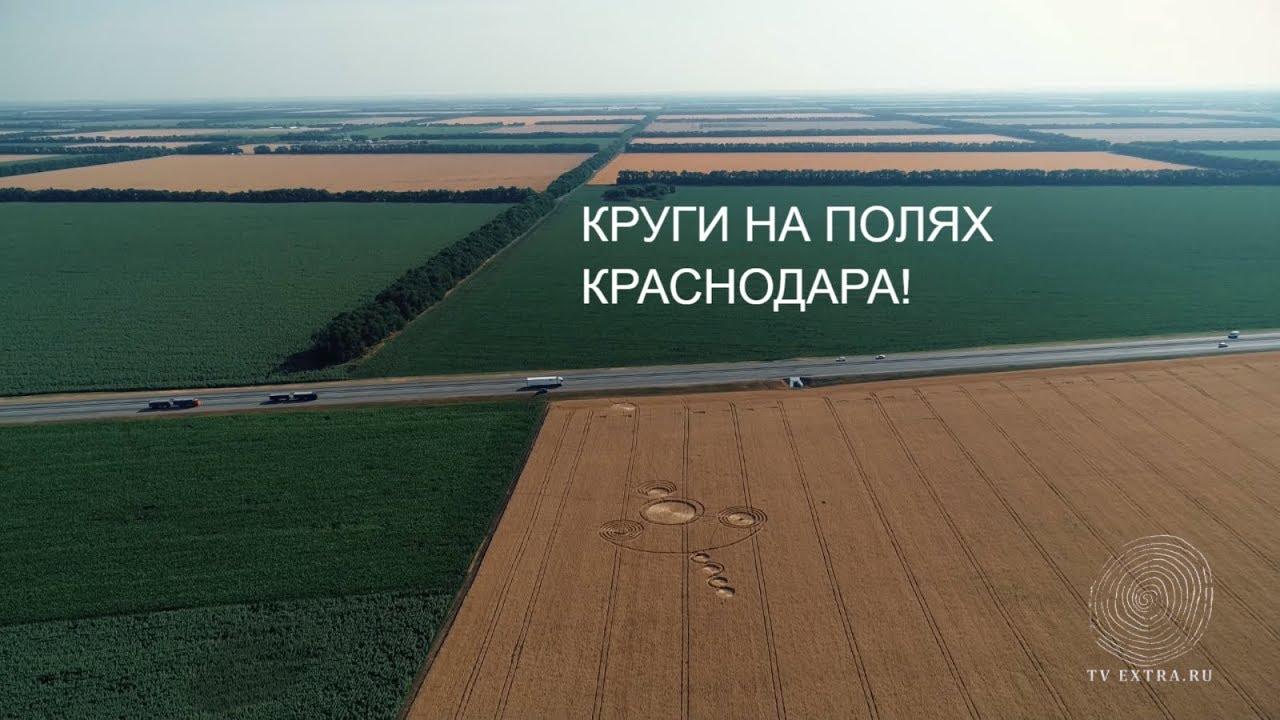 Круги на полях. Россия, Кубань