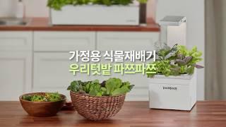 우리텃밭 파쯔파쯔 식물과 친해지는 Life Style