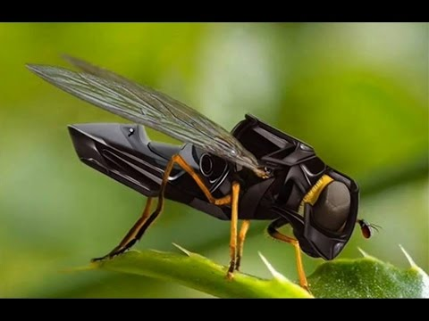 Nano Drone Technology Robotic Micro Spying  Unbelievable   The World Now  Trends On Internet